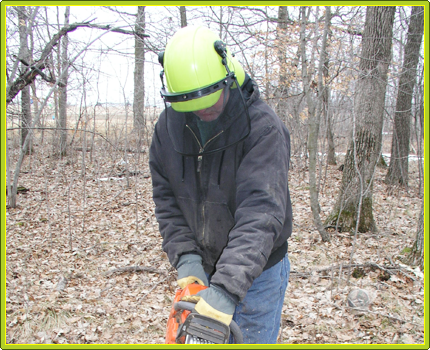 Timber Tuff Tools | Tough Tools for the Forest Industry!